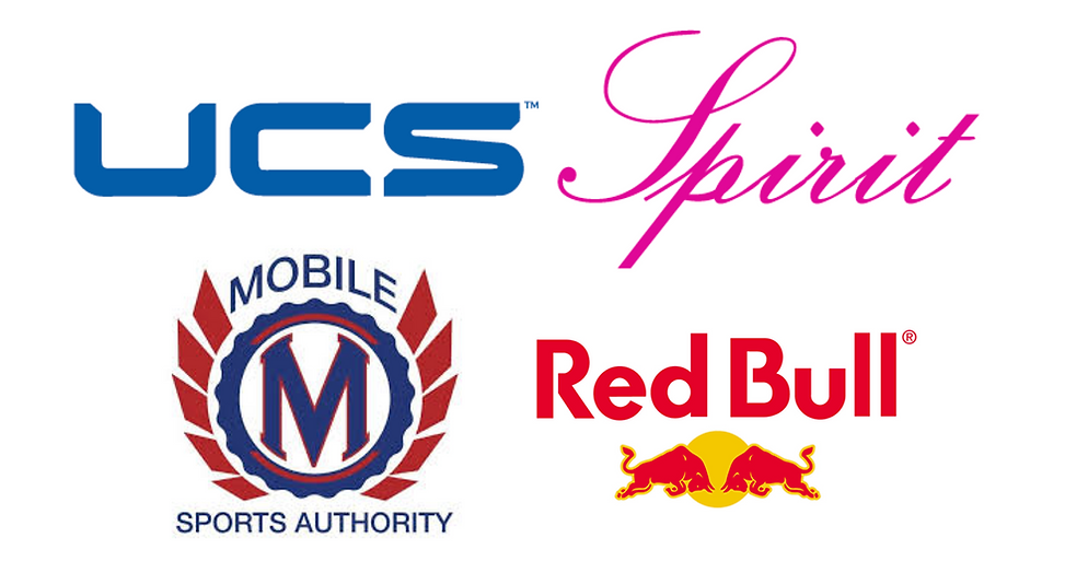 DSV 2019_Sponsor Logos.png