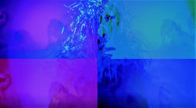 FernHorA Stream of Consciousness, 2020 I