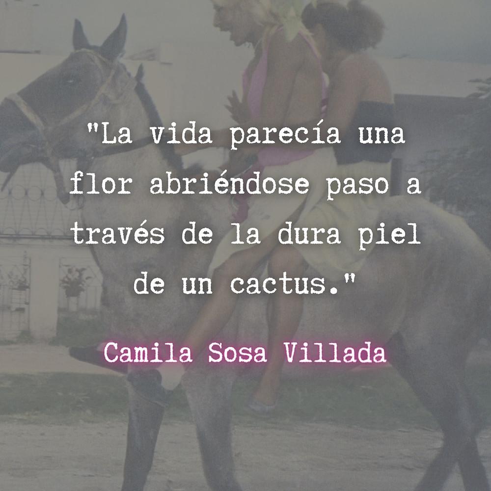 Frase / quote Las malas Camila Sosa Villada