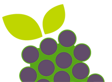 grape2.png