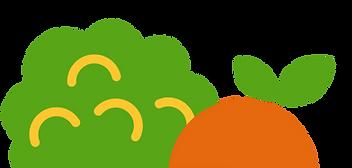 Orange_Broc_Fruit.png