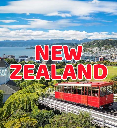 Pathway Program in New Zealand