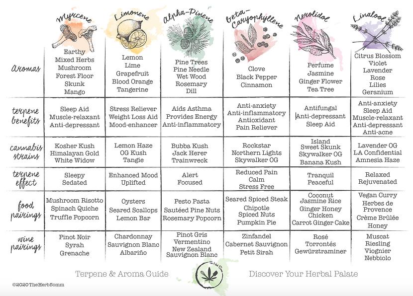 The Herb Somm's Terpene & Aroma Pairing