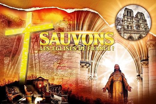 DRAPEAU SAUVONS LES EGLISES DE FRANCE NOTRE DAME DE PARIS 60 x 90 cm
