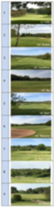 Tee Sponsors1-9 crop1.jpg