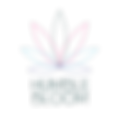 hb logo trans.png