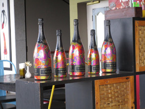 A Tour of the Sula Winery and Vineyards