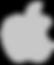 Ремонт наушников от Apple СПБ