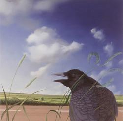 Uncommon Crow