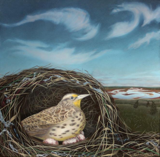 Sleeping Meadowlark