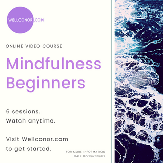 Wellconor Mindfulness Meditation Beginne