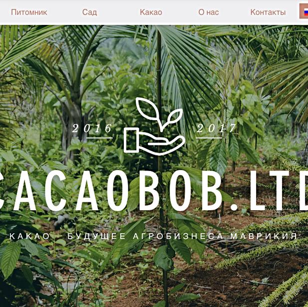 CACAOBOB.COM