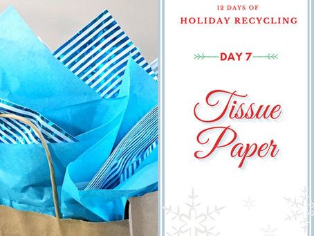 Day 7 - 12 Days of Holiday Recycling (2020)