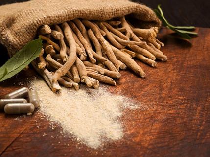 ASHWAGANDHA: Getting to Know Herbs