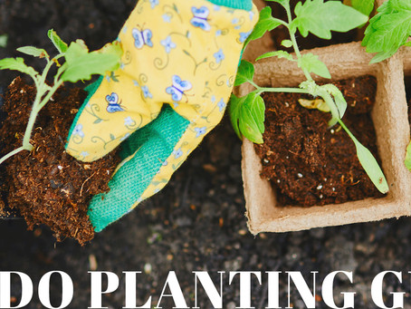 Colorado Planting Guide - Madison & Company Properties