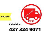 Cellulaire DEC.png