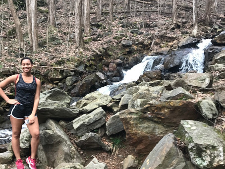 All The Places We Will Go: Amicalola Falls - Explore Your City
