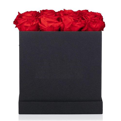 Flowerbox Garden Premium