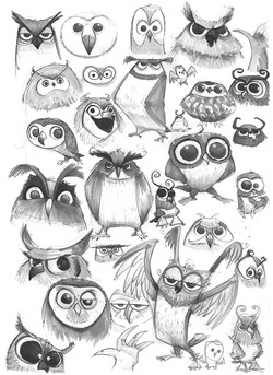 owl-sketches
