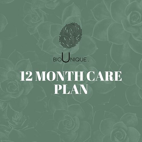 12 Month Care Plan