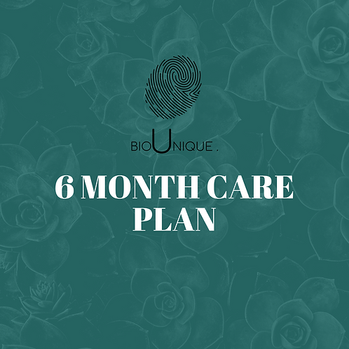 6 Month Care Plan