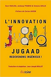 l'innovation jugaad.png
