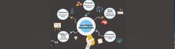 Lean Sigma Management