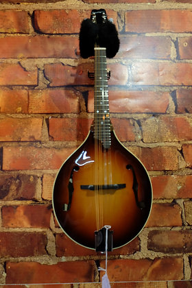 NEW Timmons A style mandolin