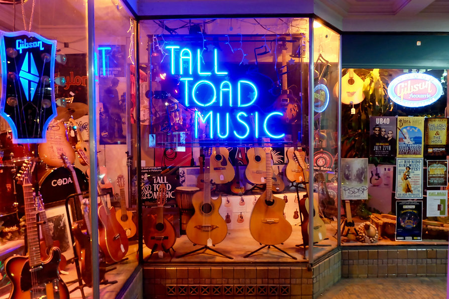 sonoma county music store instruments