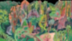 Bosque Bruja Alba