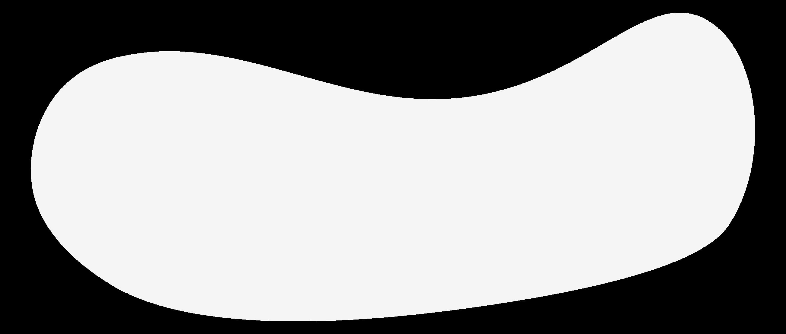 FitnessShellz Logo - Transparent-01.png