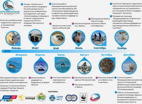 НЭЦ «Морские млекопитающие» подытожил свой 2019 год