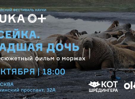 Показ научно-популярного фильма о моржах
