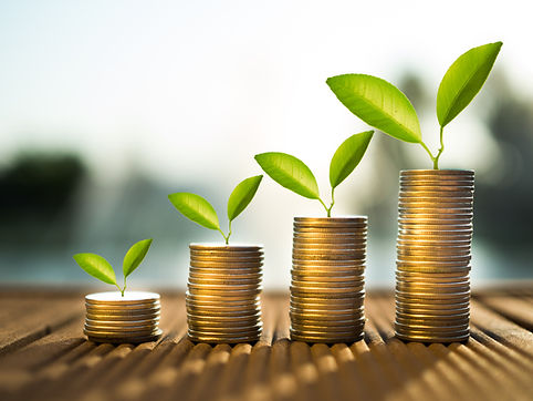 coins and money growing plant for finan