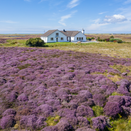 DJI_0123_Grianaig-Heather_Front.png