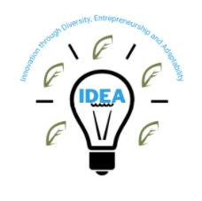 IDEA Program Intro Session