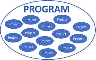 How to tell the difference between Programs and Projects