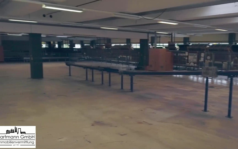 Blick in eine Lagerhalle (Gebäude 74)