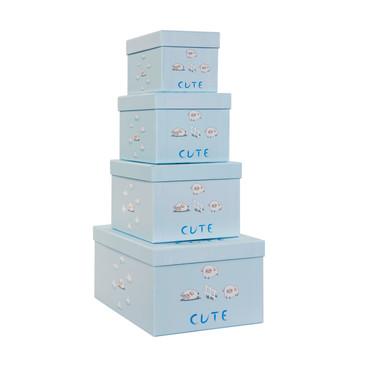 Bebek kutusu hediyelik mavi set