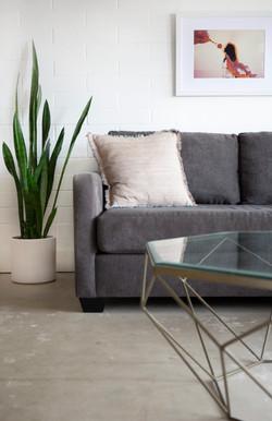 Living_room_design_house__decor_remodel_interior_designers_Trippe_Interiors_San_Diego_Carly_2
