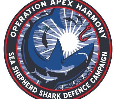 Rencontrez SEA SHEPHERD au Paris Shark Fest