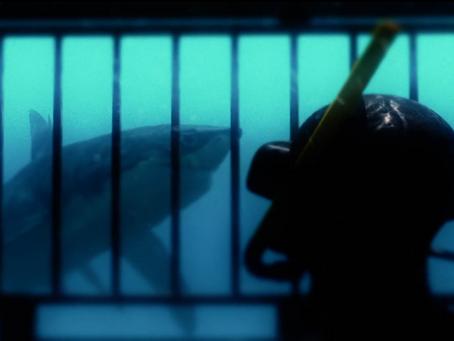 Exclusivité mondiale : les premières images de la série Sea Monster Cove !