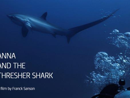 Des requins et des femmes - Sélection documentaire
