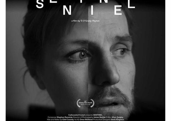 Sentinel (2020)