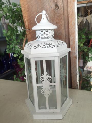 Snow White Lanterns (20)