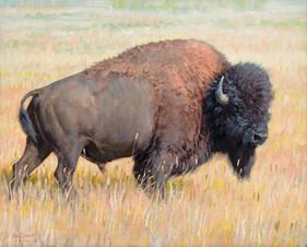 Prairie King