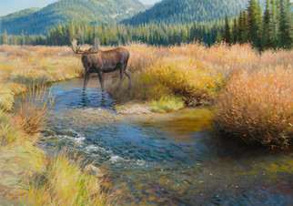 Thirsty Moose