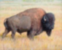 Prairie King.jpg