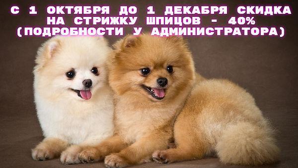 quote-2019-09-22-1569183833.jpg