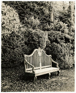 Haw Frost & Bench